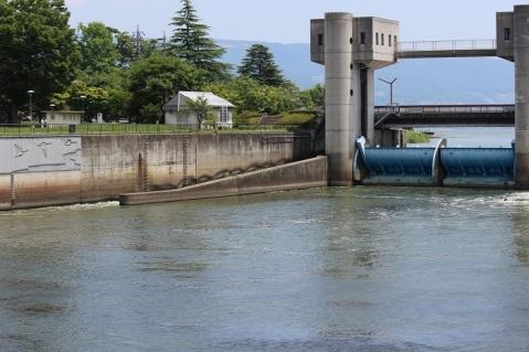 釜口水門の魚道