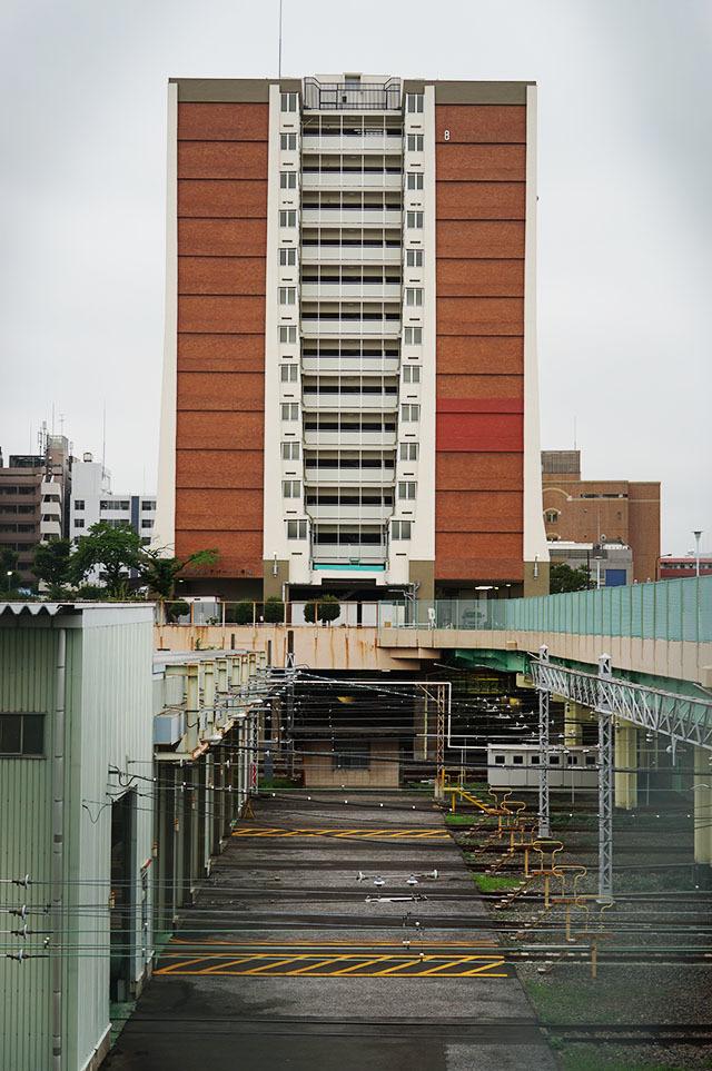 NISHIDAI01.jpg