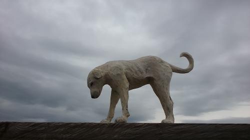 ウツムク犬2