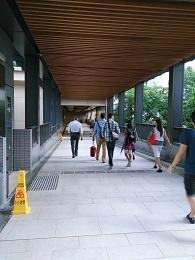 DSC_0039_1 (1)東環天橋