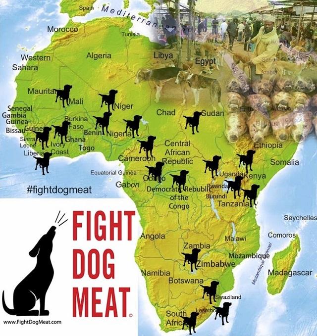 犬肉アフリカ