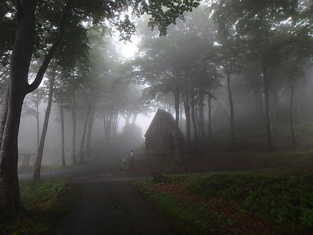 光が原高原キャンプ3