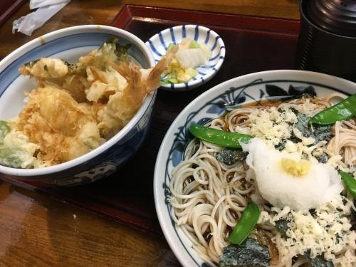天丼&磯おろし