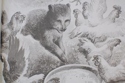 170904 (4)