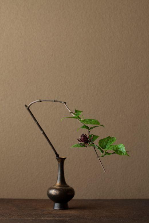 0 y 花=黒花蝋梅(クロバナロウバイ) 器=金銅華瓶(鎌倉時代)