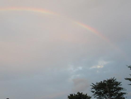 2B0S 虹と犬 18時21分 0802