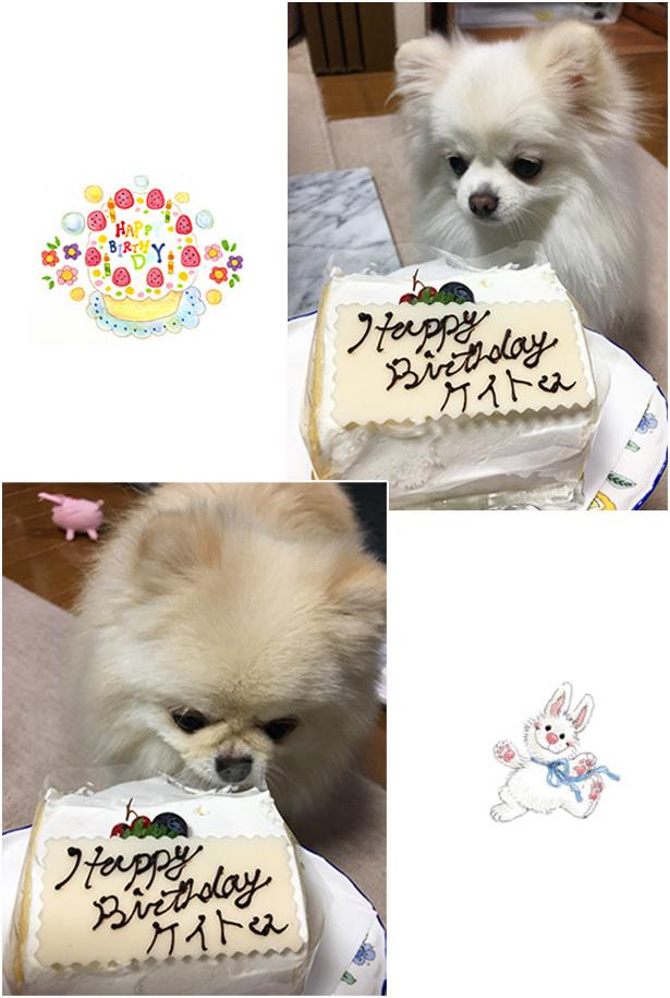 恵士誕生日3