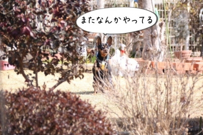 2017_03_18_1637.jpg
