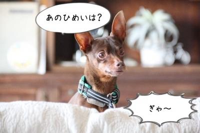 2017_03_19_1710.jpg