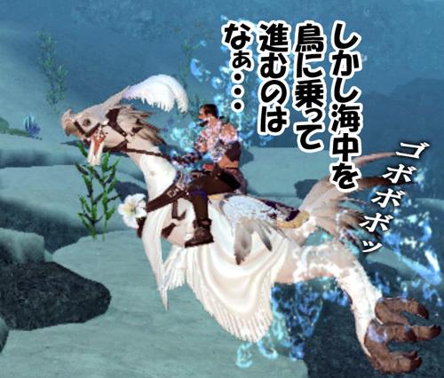 海中に鳥に騎乗するのはな・・・