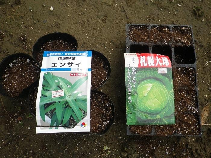 種蒔き17_07_11