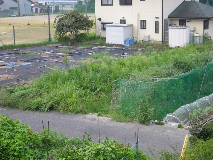 畑の様子3_17_08_21