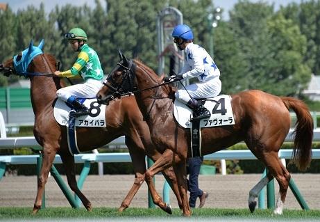 8・札幌・ファ返し馬
