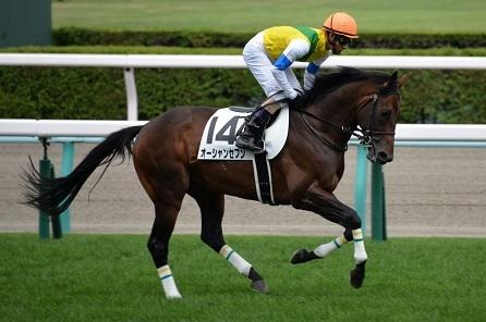 8・札幌・返し馬