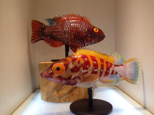 魚2 (640x480)