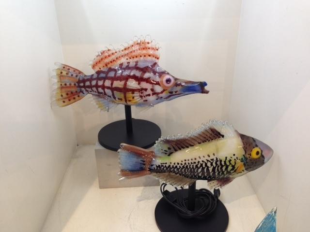 3魚 (640x480) (640x480)
