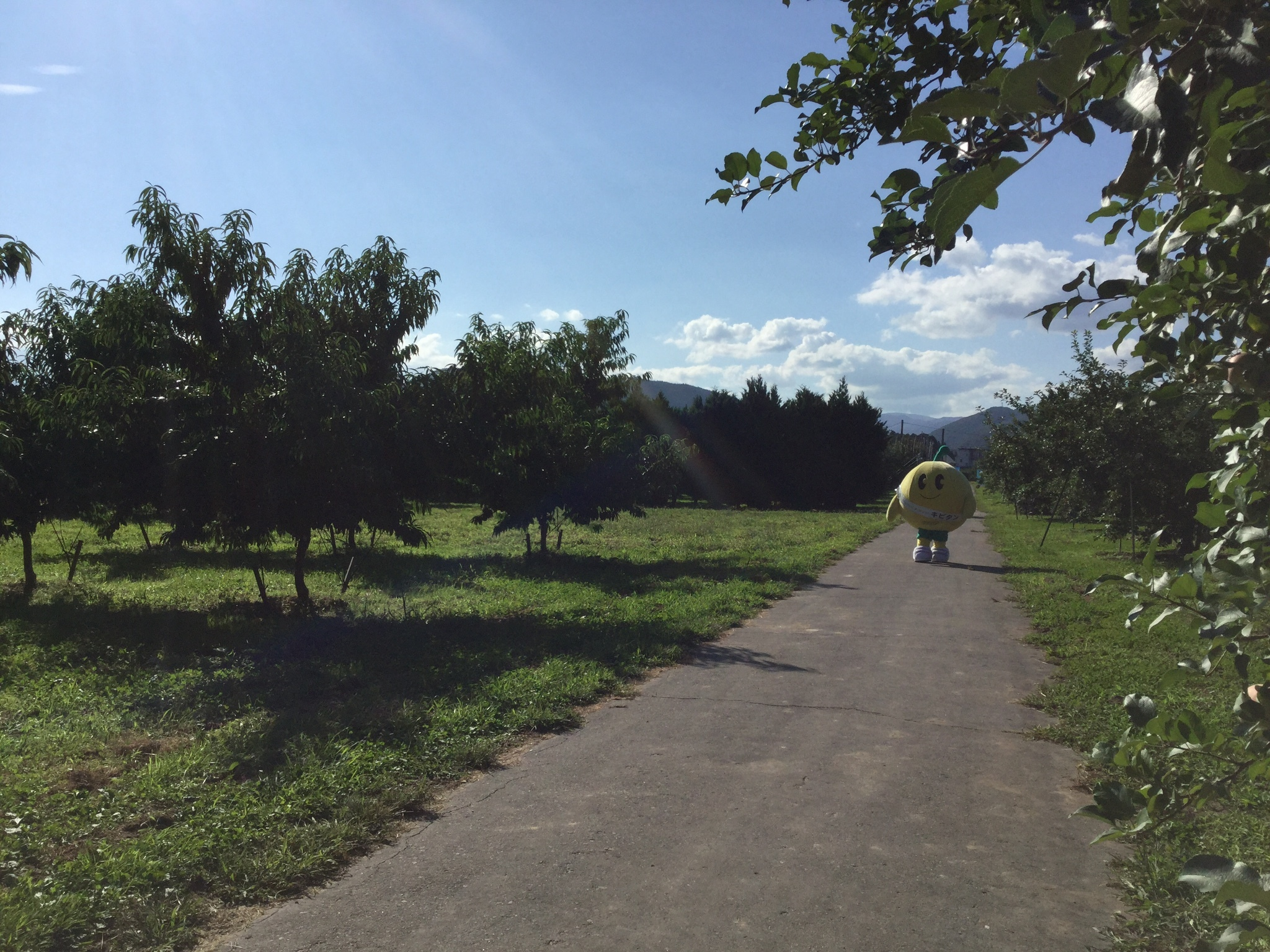 0901果樹2