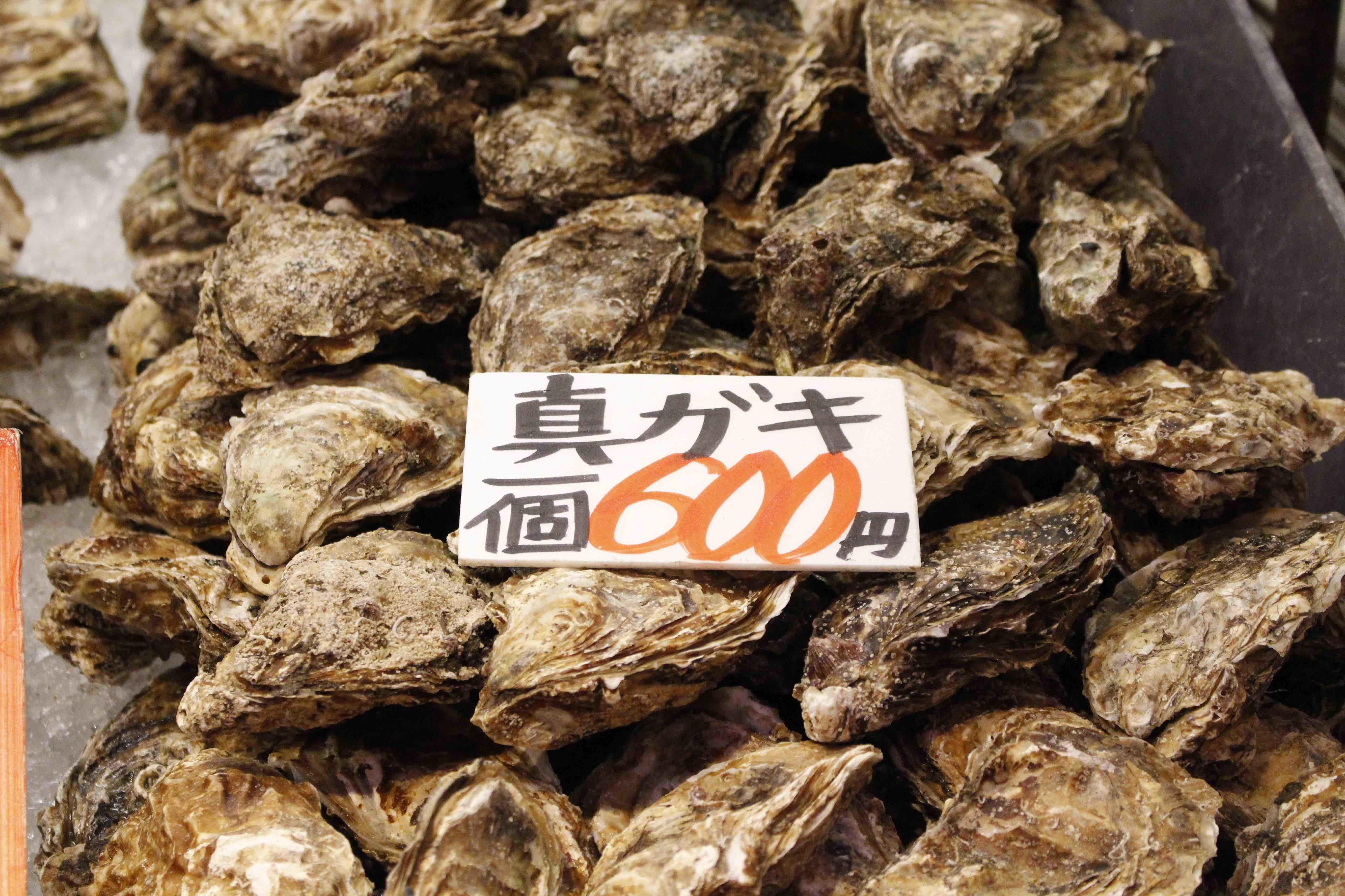 20170909岩牡蠣
