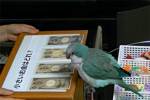 money1_1