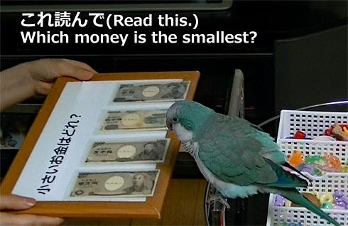 money1_2