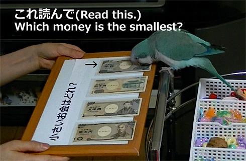 money1_3