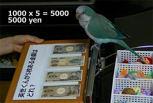 money1_6