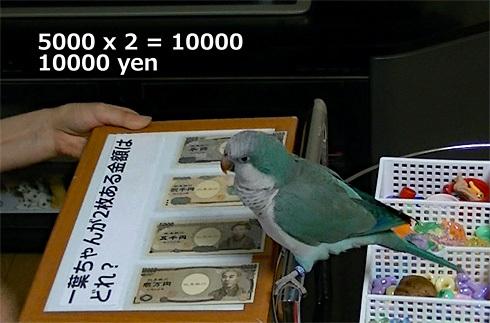money1_8