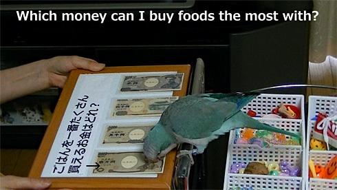 money1_9