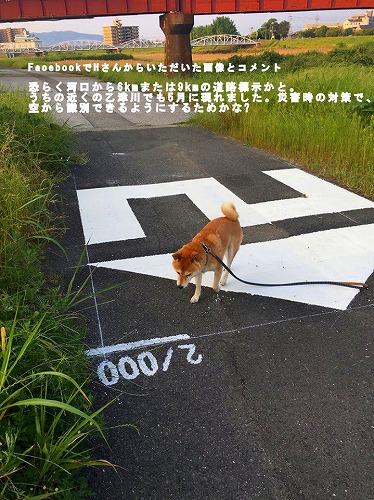 道路標識B