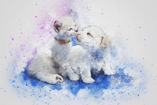 わんこ&子猫