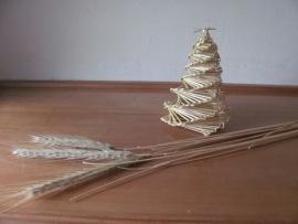 ライ麦の蛍かごIMG_7512