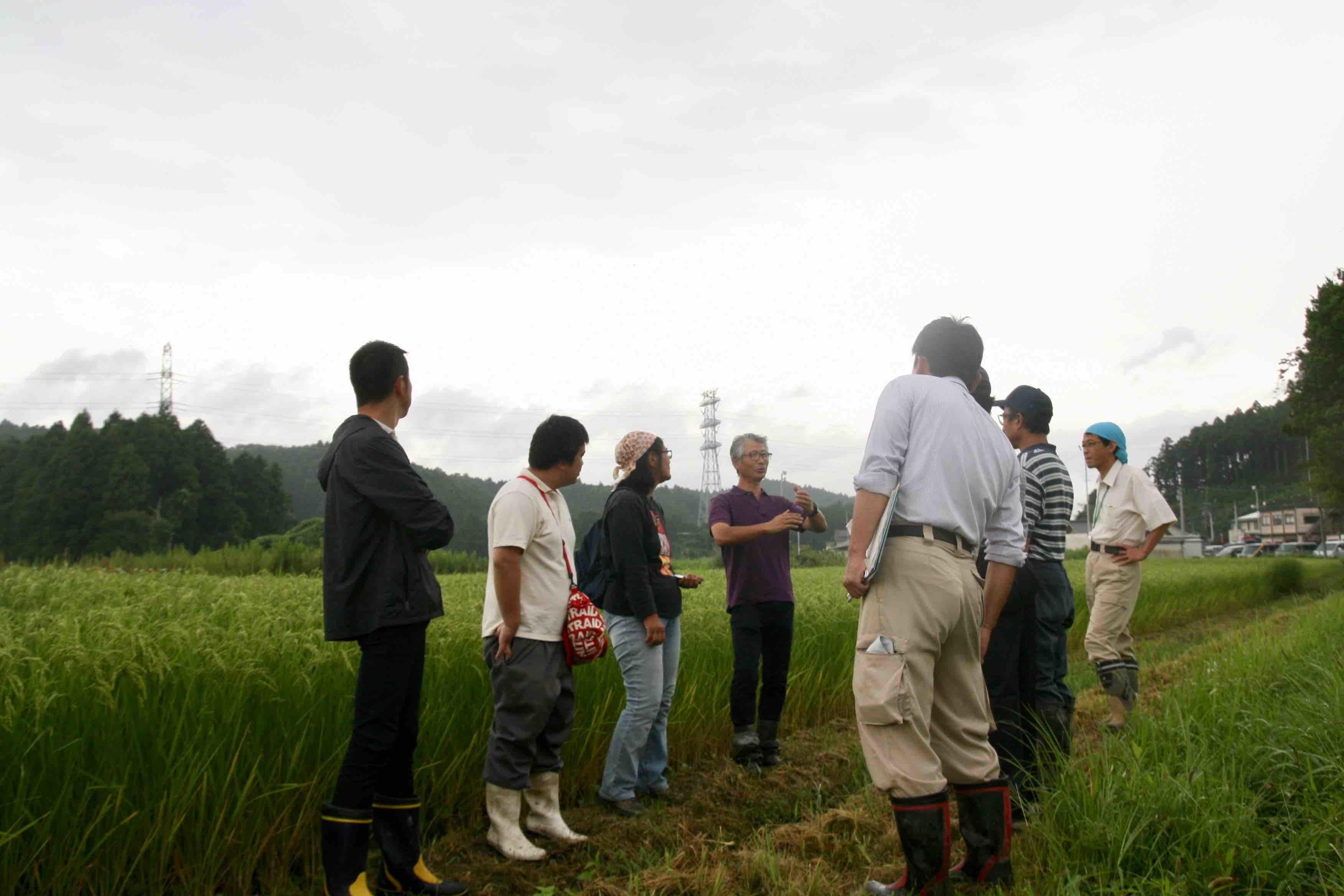 稲作技術検討交流会