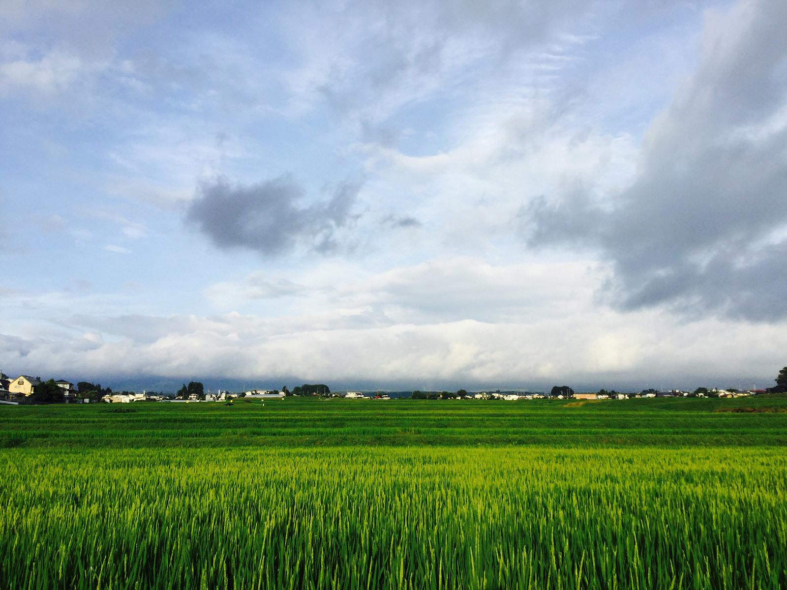 20170801_yatsugatake_1s.jpg