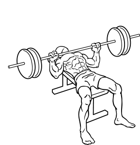 Bench-press-2_2017071605032107f.png
