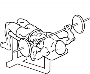 Decline-bench-press-2.png
