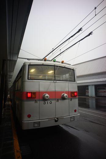 DSC06882-1.jpg