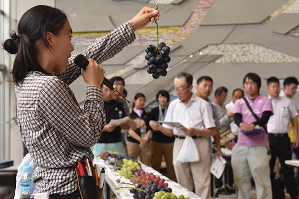 ブドウの品種検討会(茨城県農業総合センター園芸研究所で)