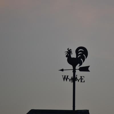 土浦・霞ヶ浦総合公園の風見鶏