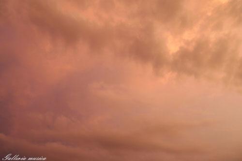 雷雨上がりの空。1