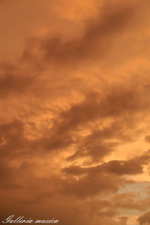 雷雨上がりの空。2