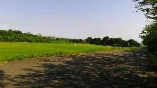 相模川右岸170710-1