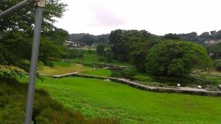 厳島湿生公園170719