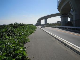 相模川に沿って170921