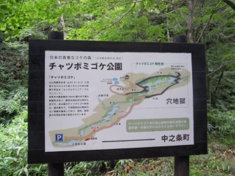 チャツボミゴケ公園案内図170820」