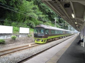 ヤマドリ170820