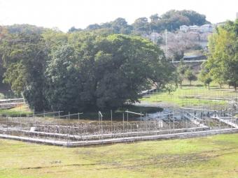 岩瀬駅170902