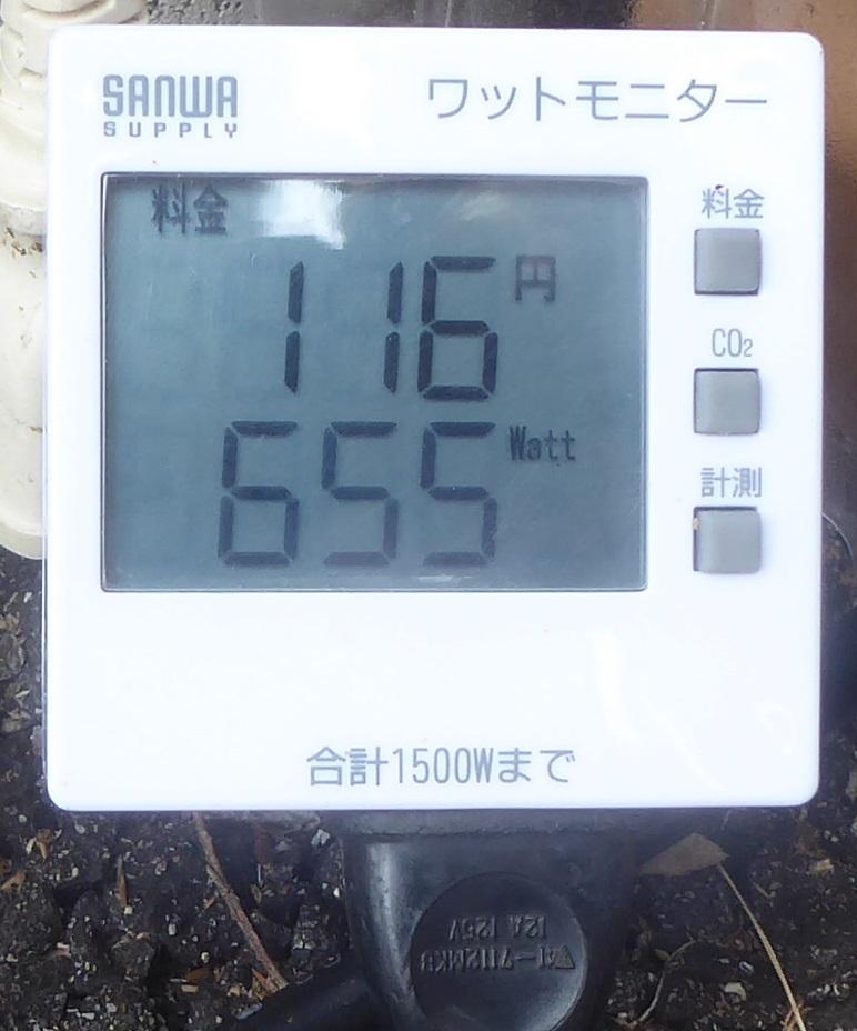 P11607991.jpg