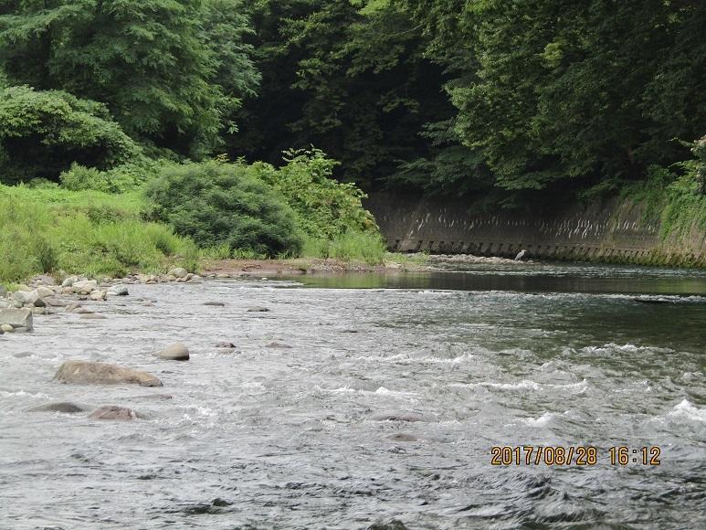 真瀬川河口2