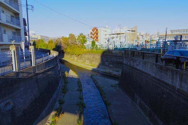善福寺川と神田川の合流地点