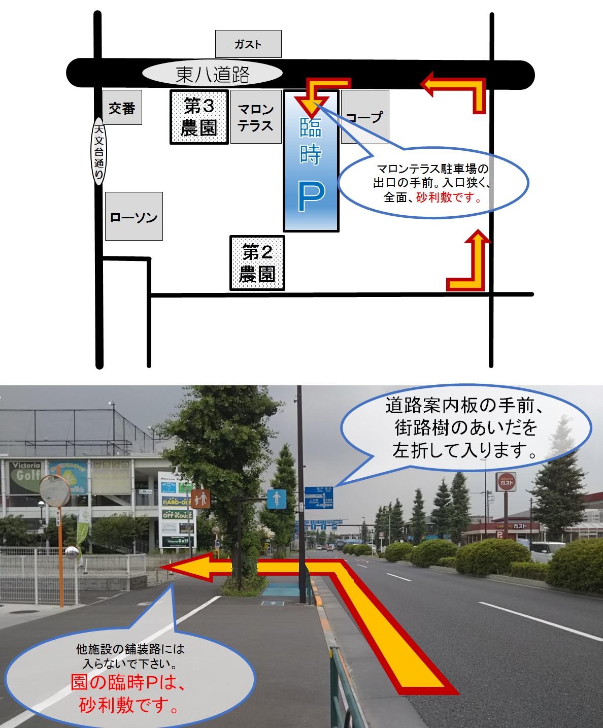 rinjiP.jpg